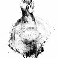 szkic ołówkiem, kurs plastyczny, kurs rysunku kraków, kurs rysunku wieliczka, kurs rysunku kubatura