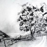 rysunek natury, rysunek ołówkiem, perspektywa, kurs rysunku kraków, kurs rysunku wieliczka